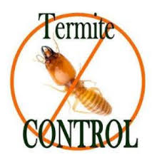 The Greatest Guide To Termite Control In Lawns