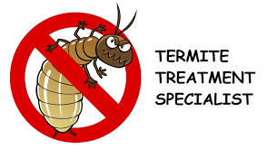 The Only Guide for Termite Control Methods
