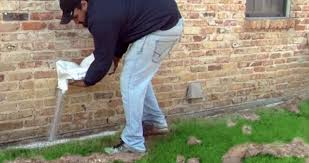 3 Easy Facts About Express Termite & Pest Control Adelaide Described